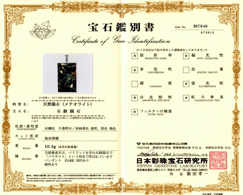 パラサイト隕石の鑑別書